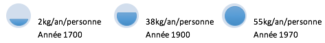 Alix Le Calvez Diététicienne Nutritionniste