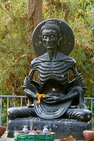 buddha acète Alix Le Calvez Nutritionniste