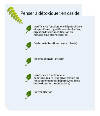 Alix Le Calvez Diététicienne Nutritionniste Bordeaux.png